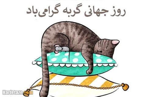 اینستاگرام روز جهانی گربه