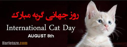 متن تبریک روز جهانی گربه 2021 + عکس نوشته پروفایل روز جهانی گربه 1400