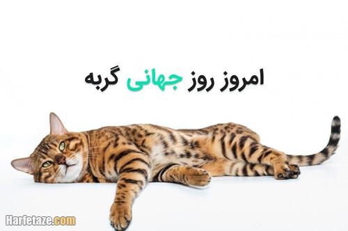 متن درباره روز جهانی گربه