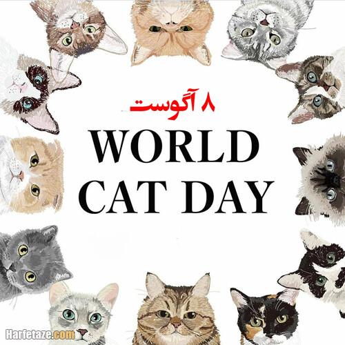 عکس نوشته تبریک روز جهانی گربه