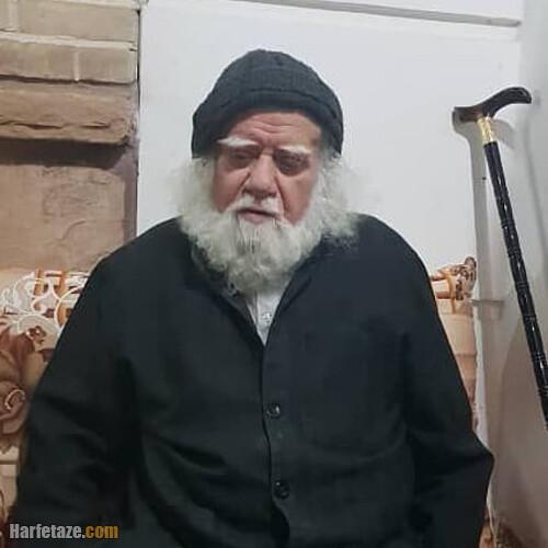 استاد محمدرضا حکیمی کیست