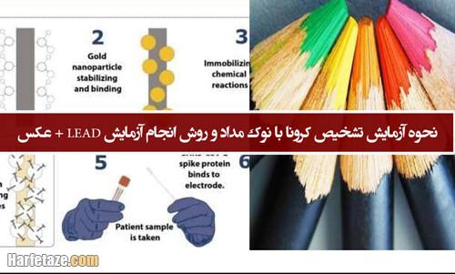 آزمایش LEAD برای تشخیص کرونا با نوک مداد چیست و چگونه انجام میشود؟ + نحوه آزمایش