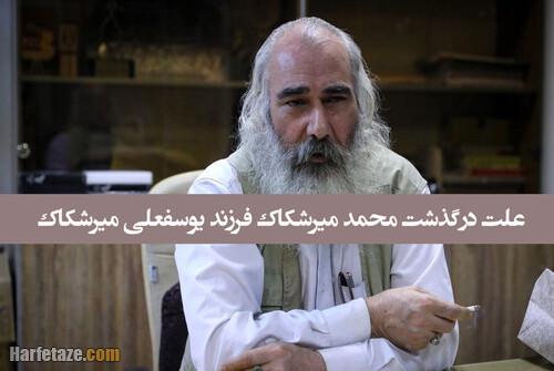 محمد میرشکاک فرزند یوسف میرشکاک شاعر