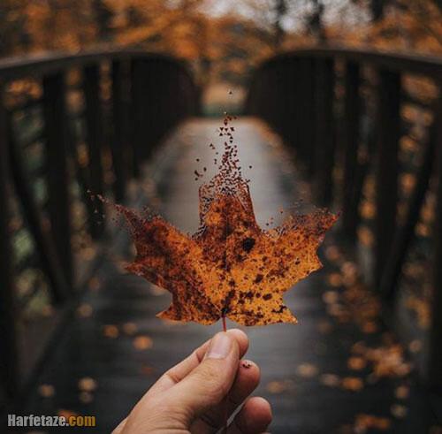 عکس پاییز بدون متن دلگیر