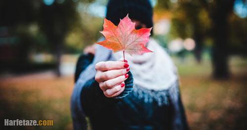 دانلود عکس پاییز بدون متن با کیفیت بالا