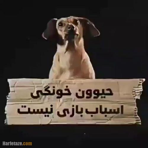 عکس نوشته تبریک روز مبارزه با خشونت علیه حیوانات