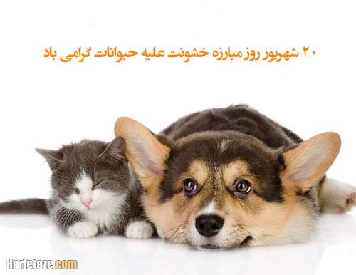 عکس پروفایل تبریک روز مبارزه با خشونت علیه حیوانات