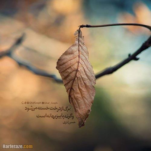 عکس نوشته برگ پاییزی