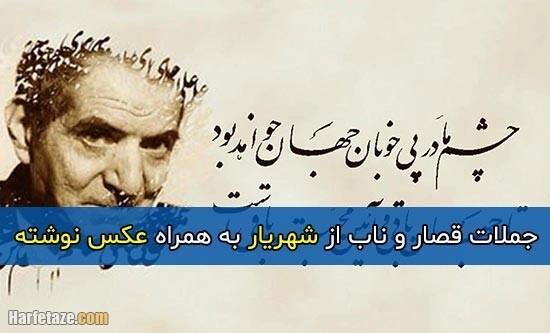 جملات کوتاه و ناب شهریار + عکس نوشته و عکس پروفایل جملات شهریار