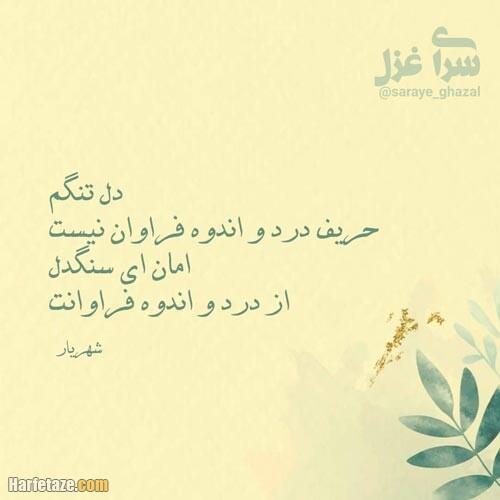 عکس پروفایل اشعار شهریار