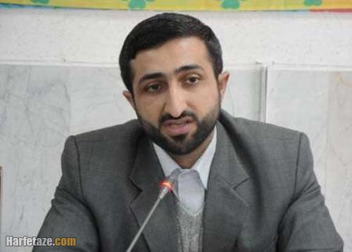 سوابق سید حامد عاملی