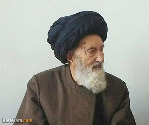 آیت الله میرفخرالدین موسوی عضو خبرگان رهبری درگذشت