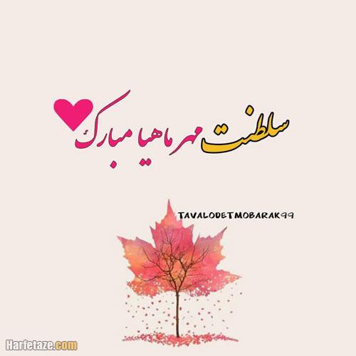 اس ام اس تبریک تولد دوست مهر ماهی