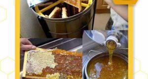 انواع اکستراکتور عسل و نحوه کارکرد آن